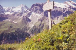 Copyright Alpinehikers 2016
